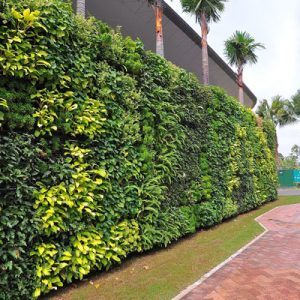 vgm-green-wall