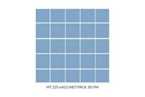 MT-22S-6423-NET-PACK-30-PM