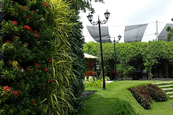 vgp-green-wall